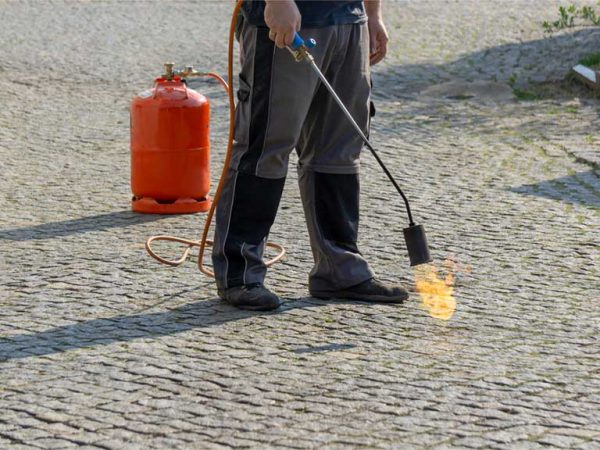 Quelle est la meilleure période pour désherber avec les outils flamme Express Farming